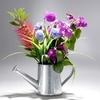 bouquet-6-45498.jpg